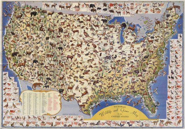 Wildlife of the United States